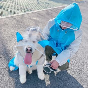 Pet dinosaur raincoat, portable, cuttable, lightweight and waterproof