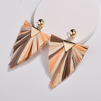 Pretty Triangle Design Splice Earrings