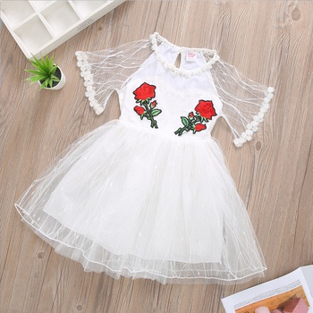 Trendy Rose Embroidered Dress for Girl