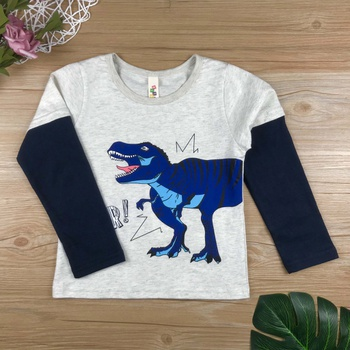Cute Roar Dino Color Blocked Long-sleeve Top for Baby and Toddler