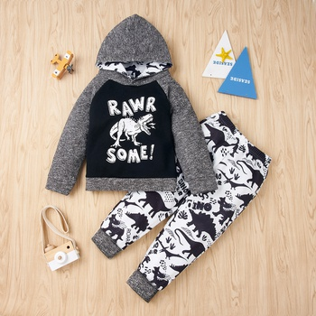 2-piece Baby / Toddler Dinosaur Letter Long-sleeve Hooded Pullover and Pants Set
