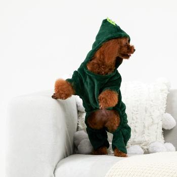 Pet Dinosaurs Transform Clothes