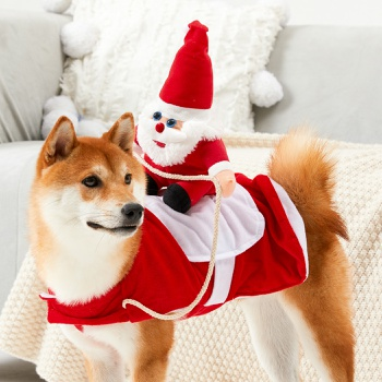 Funny Cat Clothes Riding Outfits