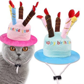 Birthday Hat for Cat Dog