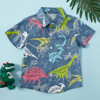 Baby / Toddler Boy Stylish Dino Allover Shirt