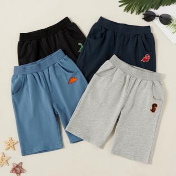 Fashionable Dinosaur Embroidered Shorts