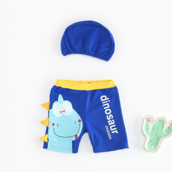 Cute Dinosaur Design Swim Shorts and Hat Set for Toddler Boy and Boy