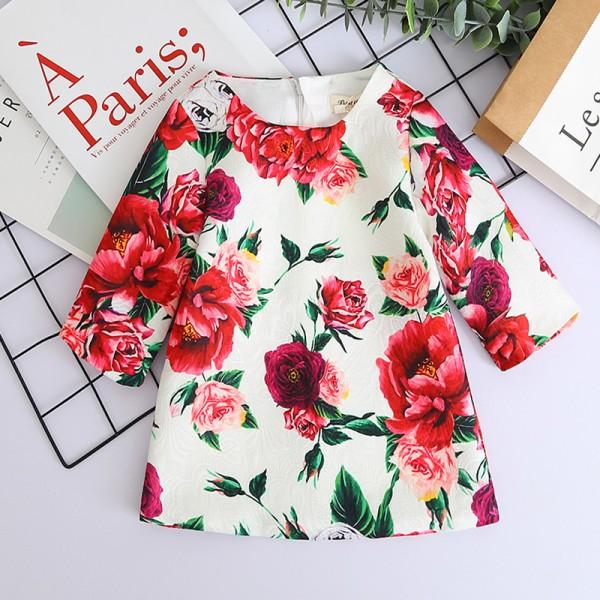Elegant Flower Print Long Sleeve Dress for Toddler Girl and Girls