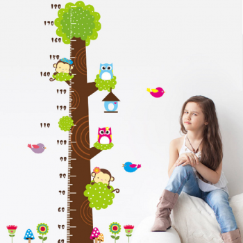 Stylish Monkey Owl Height Wall Sticker